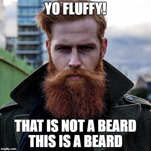 YO FLUFFY! THAT IS NOT A BEARD THIS IS A BEARD | image tagged in beard | made w/ Imgflip meme maker