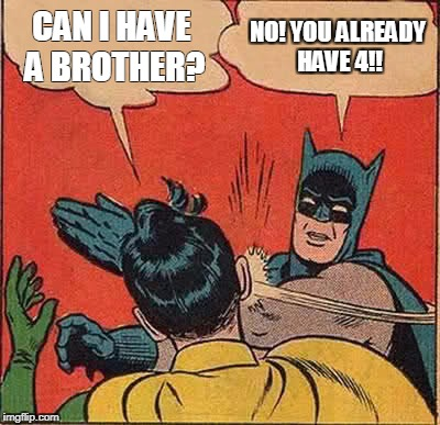 Batman Slapping Robin Meme | CAN I HAVE A BROTHER? NO! YOU ALREADY HAVE 4!! | image tagged in memes,batman slapping robin | made w/ Imgflip meme maker
