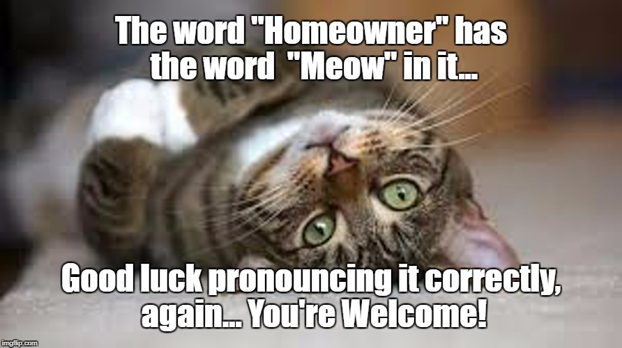 "Ho-Meow-ner | The word ""Homeowner"" has the word  ""Meow"" in it... Good luck pronouncing it correctly, again... You're Welcome! 