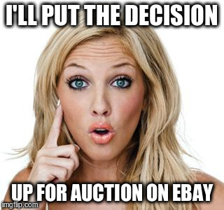 I'LL PUT THE DECISION UP FOR AUCTION ON EBAY | made w/ Imgflip meme maker