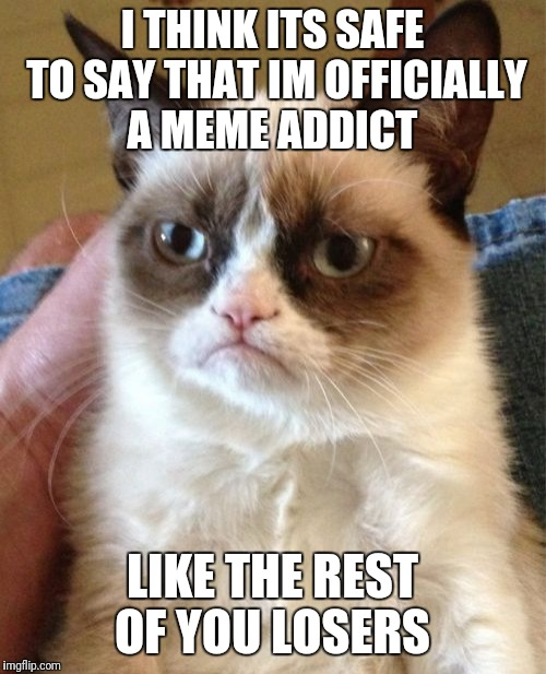 Grumpy Cat Meme | I THINK ITS SAFE TO SAY THAT IM OFFICIALLY A MEME ADDICT LIKE THE REST OF YOU LOSERS | image tagged in memes,grumpy cat | made w/ Imgflip meme maker