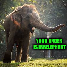 YOUR ANGER IS IRRELEPHANT | made w/ Imgflip meme maker