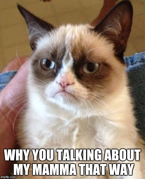Grumpy Cat Meme | WHY YOU TALKING ABOUT MY MAMMA THAT WAY | image tagged in memes,grumpy cat | made w/ Imgflip meme maker