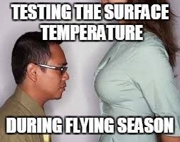 TESTING THE SURFACE TEMPERATURE DURING FLYING SEASON | made w/ Imgflip meme maker