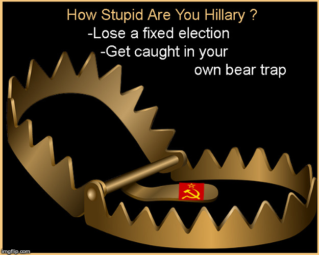 How stupid is Hillary ? Pretty stupid | image tagged in hillary clinton for jail 2016,lol so funny,funny memes,politics lol,current events,donald trump approves | made w/ Imgflip meme maker