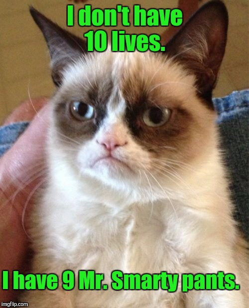 Grumpy Cat Meme | I don't have 10 lives. I have 9 Mr. Smarty pants. | image tagged in memes,grumpy cat | made w/ Imgflip meme maker