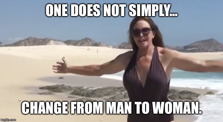ONE DOES NOT SIMPLY... CHANGE FROM MAN TO WOMAN. | image tagged in freedom isnt free | made w/ Imgflip meme maker