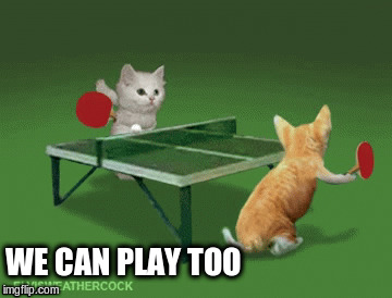 WE CAN PLAY TOO | made w/ Imgflip meme maker