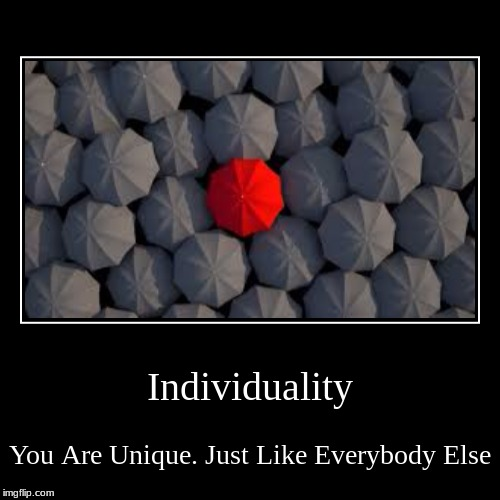 Individuality | You Are Unique. Just Like Everybody Else | image tagged in funny,demotivationals | made w/ Imgflip demotivational maker