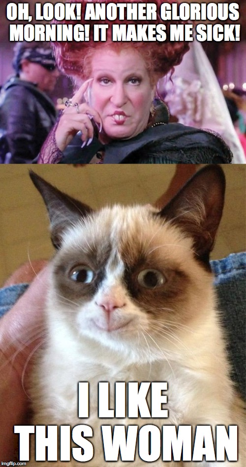 I see the beginnings of a psychology club right here... | OH, LOOK! ANOTHER GLORIOUS MORNING! IT MAKES ME SICK! I LIKE THIS WOMAN | image tagged in grumpy cat,hocus pocus,memes | made w/ Imgflip meme maker