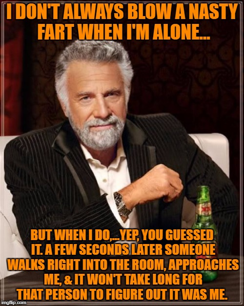 The Most Interesting Man In The World Meme | I DON'T ALWAYS BLOW A NASTY FART WHEN I'M ALONE... BUT WHEN I DO,...YEP, YOU GUESSED IT. A FEW SECONDS LATER SOMEONE WALKS RIGHT INTO THE RO | image tagged in memes,the most interesting man in the world | made w/ Imgflip meme maker