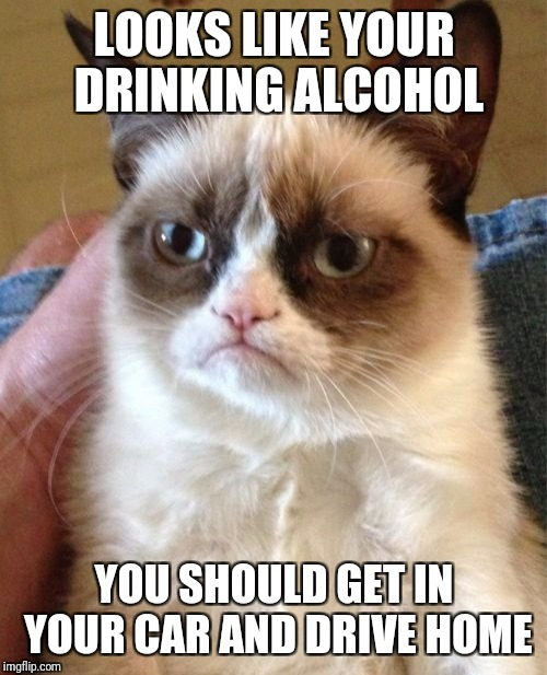 Grumpy Cat Meme | LOOKS LIKE YOUR DRINKING ALCOHOL YOU SHOULD GET IN YOUR CAR AND DRIVE HOME | image tagged in memes,grumpy cat | made w/ Imgflip meme maker