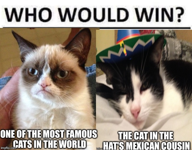 Who would win? | ONE OF THE MOST FAMOUS CATS IN THE WORLD THE CAT IN THE HAT'S MEXICAN COUSIN | image tagged in who would win,grumpy cat,cats,cat in the hat | made w/ Imgflip meme maker