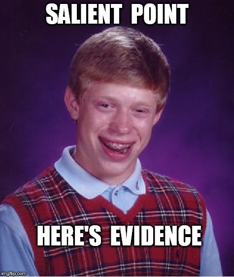 Bad Luck Brian Meme | SALIENT  POINT HERE'S  EVIDENCE | image tagged in memes,bad luck brian | made w/ Imgflip meme maker