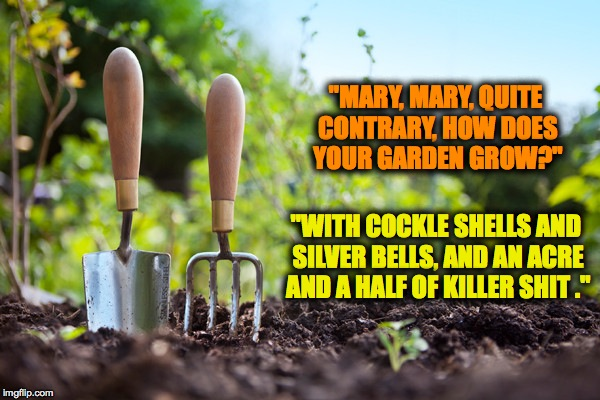 "George Carlin's Nursery Rhymes | ""MARY, MARY, QUITE CONTRARY, HOW DOES YOUR GARDEN GROW?"" ""WITH COCKLE SHELLS AND SILVER BELLS, AND AN ACRE AND A HALF OF KILLER SHIT ."" 