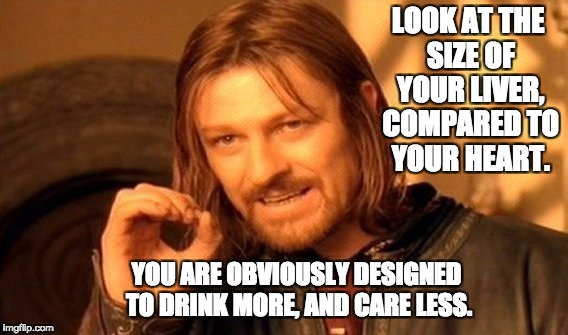 One Does Not Simply Meme | LOOK AT THE SIZE OF YOUR LIVER, COMPARED TO YOUR HEART. YOU ARE OBVIOUSLY DESIGNED TO DRINK MORE, AND CARE LESS. | image tagged in memes,one does not simply | made w/ Imgflip meme maker