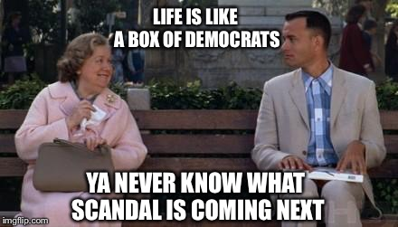 Forrest Gump | LIFE IS LIKE A BOX OF DEMOCRATS YA NEVER KNOW WHAT SCANDAL IS COMING NEXT | image tagged in forrest gump | made w/ Imgflip meme maker
