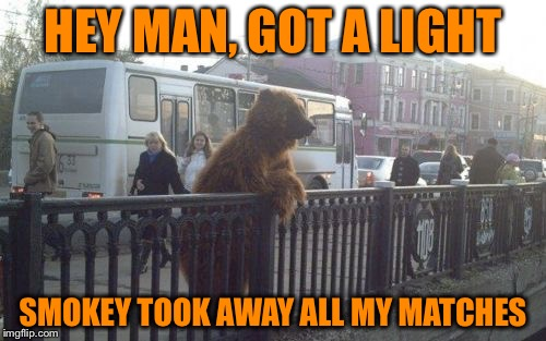 City Bear | HEY MAN, GOT A LIGHT SMOKEY TOOK AWAY ALL MY MATCHES | image tagged in memes,city bear | made w/ Imgflip meme maker
