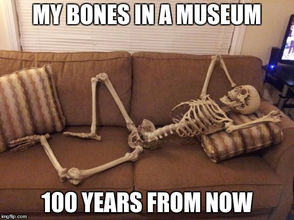 skeleton | MY BONES IN A MUSEUM 100 YEARS FROM NOW | image tagged in skeleton | made w/ Imgflip meme maker