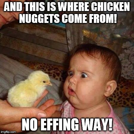 What came first the chick or the nugget? | AND THIS IS WHERE CHICKEN NUGGETS COME FROM! NO EFFING WAY! | image tagged in chicken nuggets,chick shocker,mcd's | made w/ Imgflip meme maker