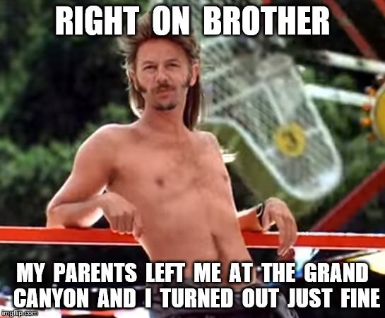 RIGHT  ON  BROTHER MY  PARENTS  LEFT  ME  AT  THE  GRAND  CANYON  AND  I  TURNED  OUT  JUST  FINE | made w/ Imgflip meme maker