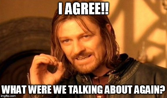 One Does Not Simply Meme | I AGREE!! WHAT WERE WE TALKING ABOUT AGAIN? | image tagged in memes,one does not simply | made w/ Imgflip meme maker