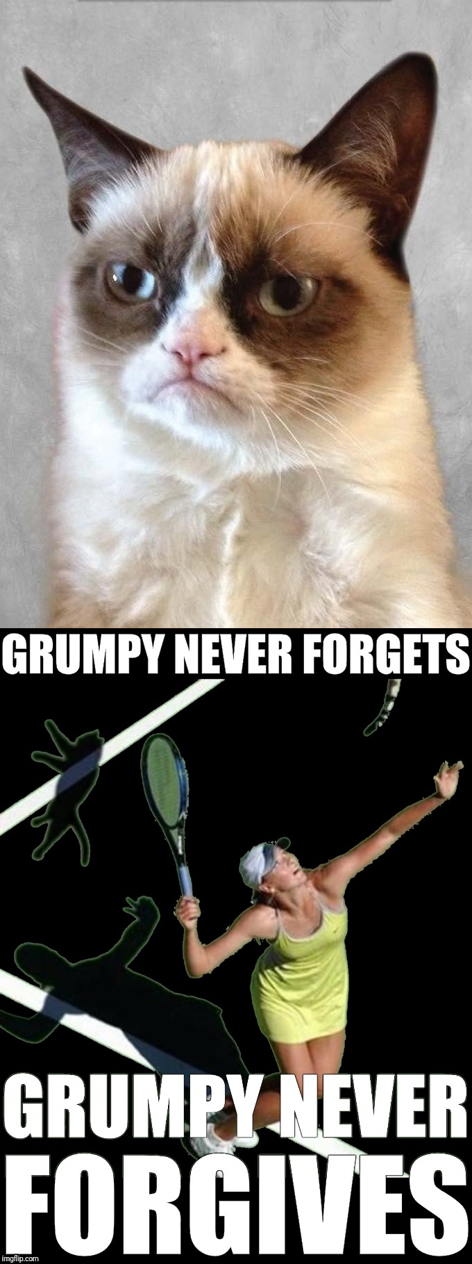 "That day was burned into Grumpy Cat's memory forever.  Grumpy can still hear her saying ""Love All"". Time to settle up. 
