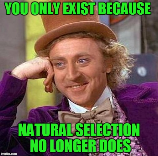There sure would be a lot less genders if good old natural selection was still in play. | YOU ONLY EXIST BECAUSE NATURAL SELECTION NO LONGER DOES | image tagged in memes,creepy condescending wonka | made w/ Imgflip meme maker
