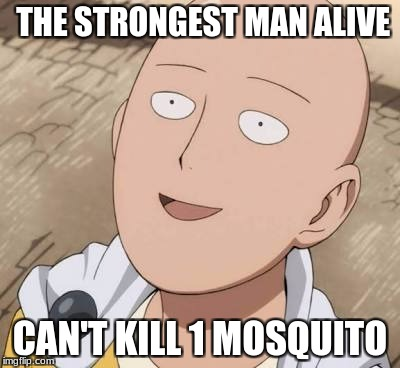 Saitama | THE STRONGEST MAN ALIVE CAN'T KILL 1 MOSQUITO | image tagged in saitama | made w/ Imgflip meme maker
