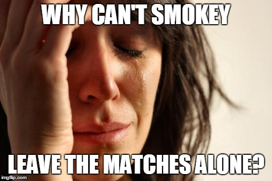 First World Problems Meme | WHY CAN'T SMOKEY LEAVE THE MATCHES ALONE? | image tagged in memes,first world problems | made w/ Imgflip meme maker