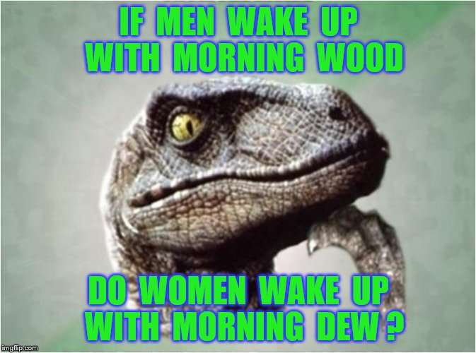 Morning wood | IF  MEN  WAKE  UP  WITH  MORNING  WOOD DO  WOMEN  WAKE  UP  WITH  MORNING  DEW ? | image tagged in memes,philosoraptor,morning wood,funny | made w/ Imgflip meme maker