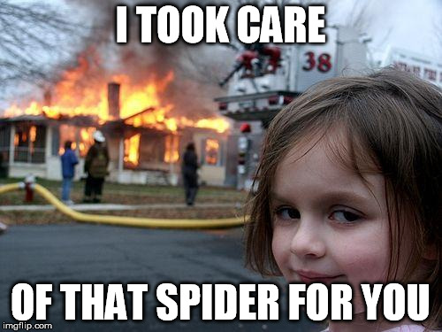 Disaster Girl Meme | I TOOK CARE OF THAT SPIDER FOR YOU | image tagged in memes,disaster girl | made w/ Imgflip meme maker
