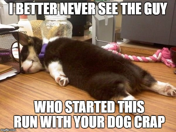 Dog Run | I BETTER NEVER SEE THE GUY WHO STARTED THIS RUN WITH YOUR DOG CRAP | image tagged in cute dog,tired dog,exhausted,dog walking | made w/ Imgflip meme maker