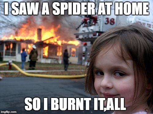 Disaster Girl Meme | I SAW A SPIDER AT HOME SO I BURNT IT,ALL | image tagged in memes,disaster girl | made w/ Imgflip meme maker