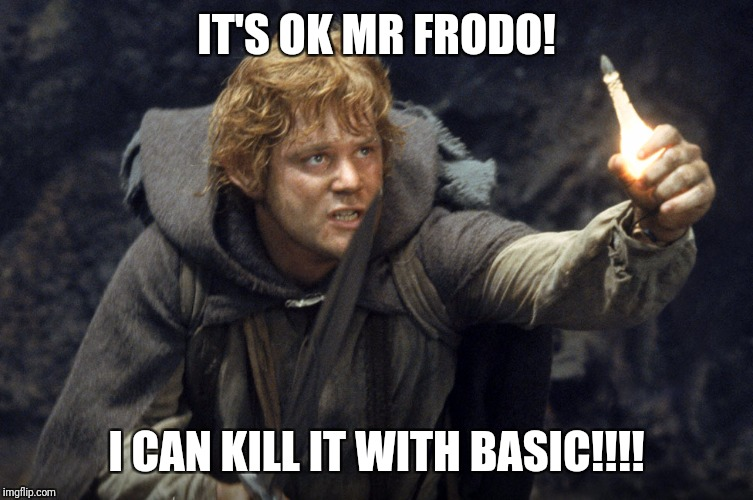 IT'S OK MR FRODO! I CAN KILL IT WITH BASIC!!!! | image tagged in samwise the brave | made w/ Imgflip meme maker