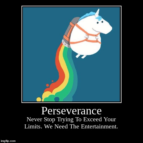 Perseverance | Never Stop Trying To Exceed Your Limits. We Need The Entertainment. | image tagged in funny,demotivationals | made w/ Imgflip demotivational maker