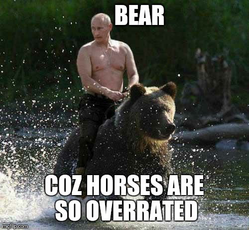 Putin Thats Cute | BEAR COZ HORSES ARE SO OVERRATED | image tagged in putin thats cute | made w/ Imgflip meme maker