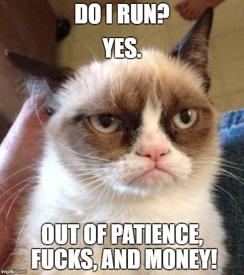 Grumpy Cat Reverse Meme | DO I RUN? OUT OF PATIENCE, F**KS, AND MONEY! YES. | image tagged in memes,grumpy cat reverse,grumpy cat | made w/ Imgflip meme maker