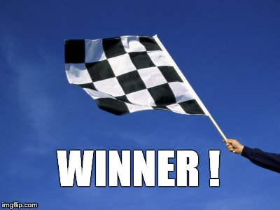 checkered flag waved | WINNER ! | image tagged in checkered flag waved | made w/ Imgflip meme maker
