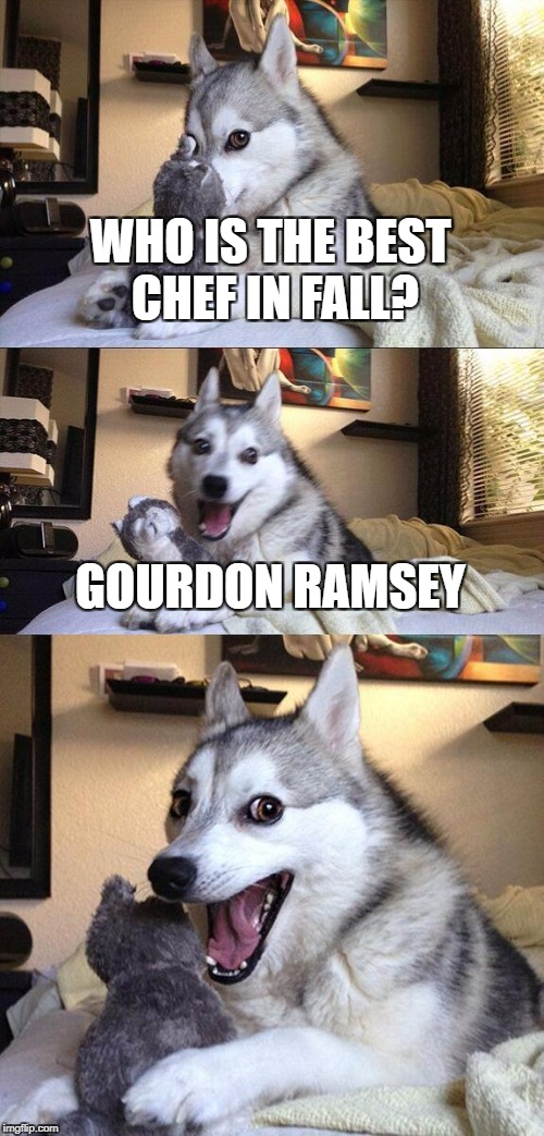 Bad Pun Dog Meme | WHO IS THE BEST CHEF IN FALL? GOURDON RAMSEY | image tagged in memes,bad pun dog | made w/ Imgflip meme maker