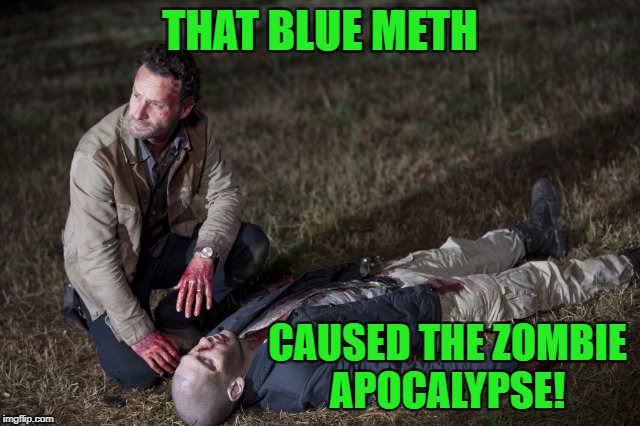 Rick and Shane | THAT BLUE METH CAUSED THE ZOMBIE APOCALYPSE! | image tagged in rick and shane | made w/ Imgflip meme maker