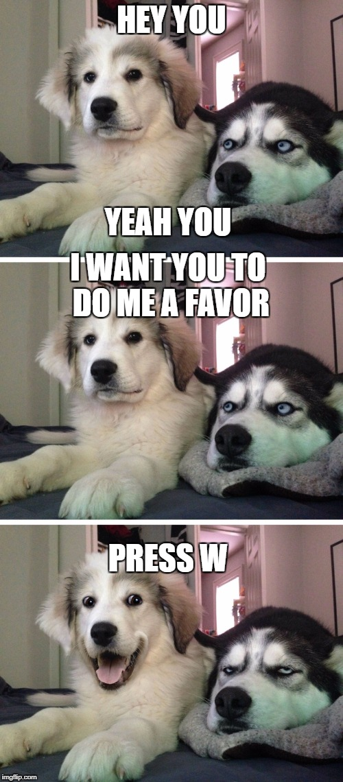 PSSSTTT | HEY YOU YEAH YOU I WANT YOU TO DO ME A FAVOR PRESS W | image tagged in bad pun dogs,meme,funny,dogs,upvote,lol | made w/ Imgflip meme maker