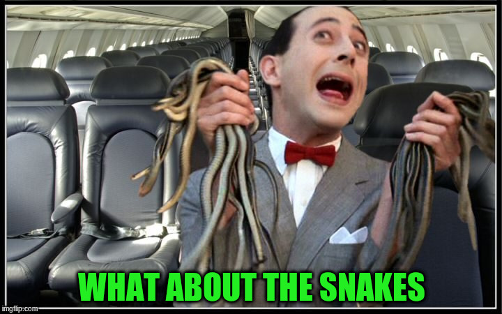 WHAT ABOUT THE SNAKES | made w/ Imgflip meme maker