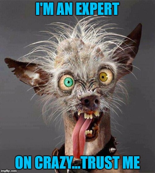 I'M AN EXPERT ON CRAZY...TRUST ME | made w/ Imgflip meme maker