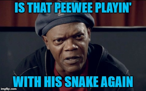 IS THAT PEEWEE PLAYIN' WITH HIS SNAKE AGAIN | made w/ Imgflip meme maker