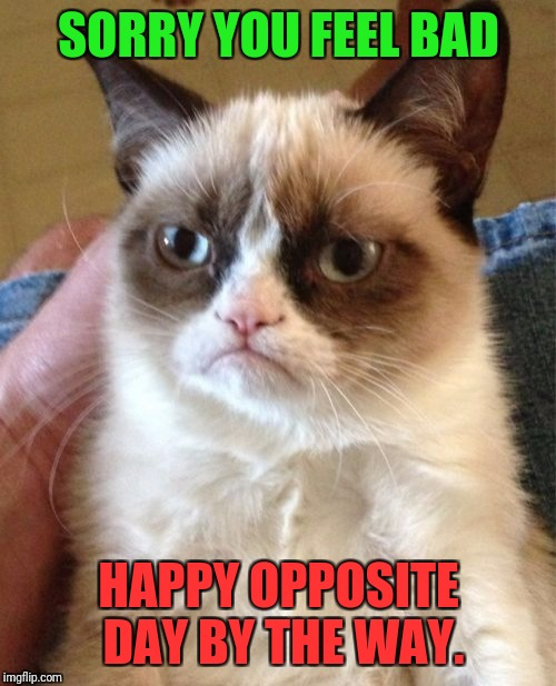 Grumpy Cat Meme | SORRY YOU FEEL BAD HAPPY OPPOSITE DAY BY THE WAY. | image tagged in memes,grumpy cat | made w/ Imgflip meme maker