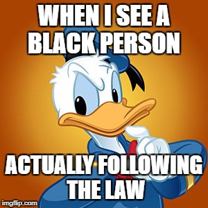 Donald Duck meme | WHEN I SEE A BLACK PERSON ACTUALLY FOLLOWING THE LAW | image tagged in donald duck meme | made w/ Imgflip meme maker