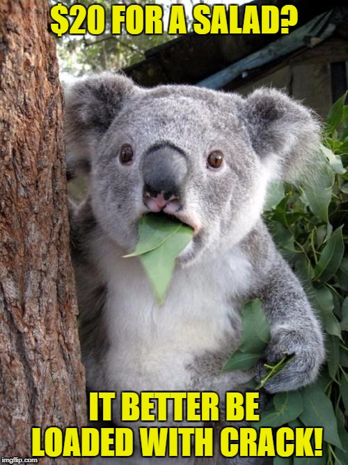 Surprised Koala Meme | $20 FOR A SALAD? IT BETTER BE LOADED WITH CRACK! | image tagged in memes,surprised koala | made w/ Imgflip meme maker