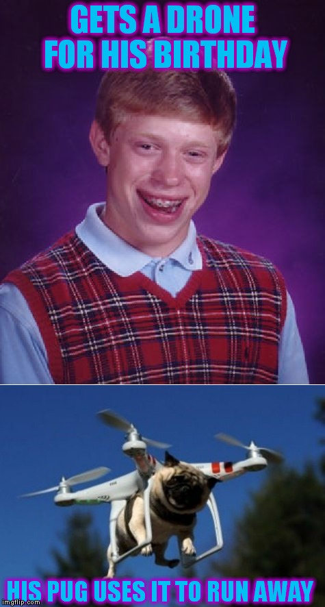PuG LiFe | GETS A DRONE FOR HIS BIRTHDAY HIS PUG USES IT TO RUN AWAY | image tagged in bad luck brian,pug,drone,get outta here | made w/ Imgflip meme maker