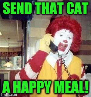 SEND THAT CAT A HAPPY MEAL! | image tagged in ronald | made w/ Imgflip meme maker